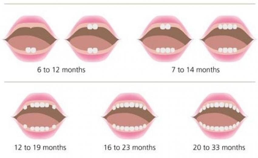 Rast zubića kod beba
