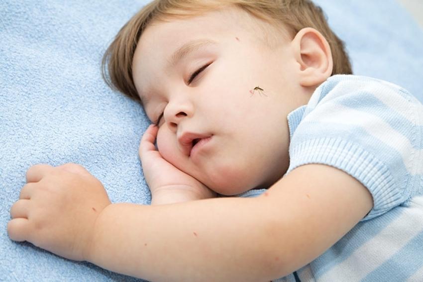 Deca i insekti – komarac, osa, stršljen, krpelj, pauk…