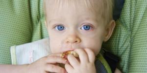 Visoko alergogene namirnice u bebinoj ishrani
