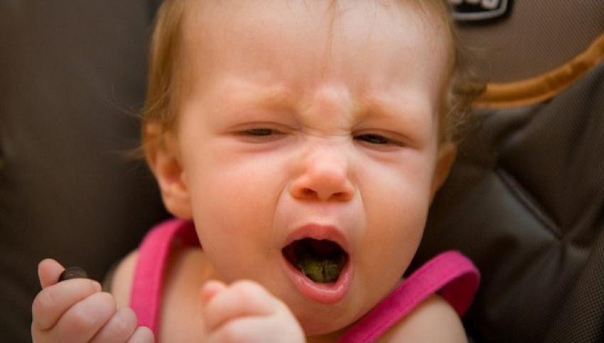 Začini u ishrani beba i dece