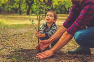 Boravak na otvorenom - uslov za zdraviji život dece