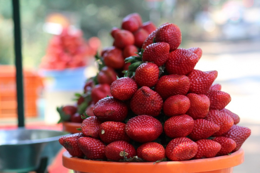 Da li smem da jedem jagode u trudnoći i tokom dojenja?
