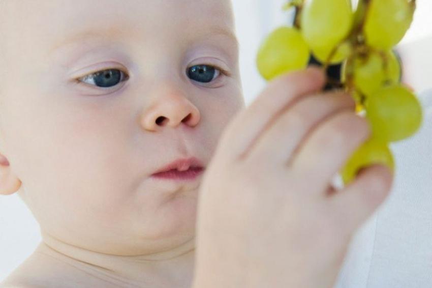 Ishrana beba: Kada se u bebin jelovnik uvodi grožđe
